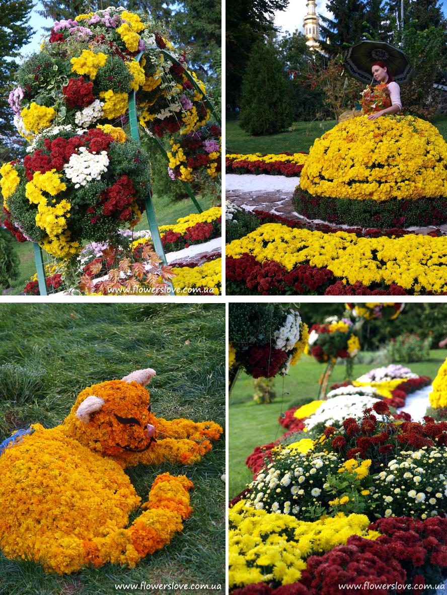 vystavka_chrysantem_2012