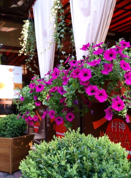 flowerslove_oformlenie_restorana
